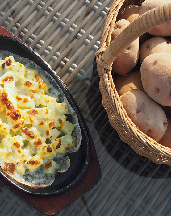 Experience potato gratin with overwintered potatoes
