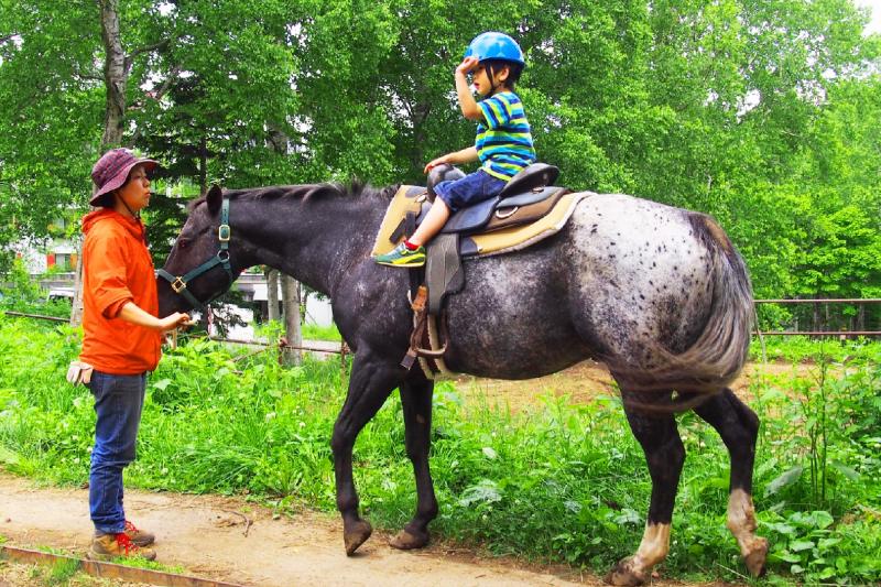 引き馬コース
