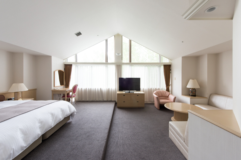 Living room of the mountain-view junior suite (1 double bed)