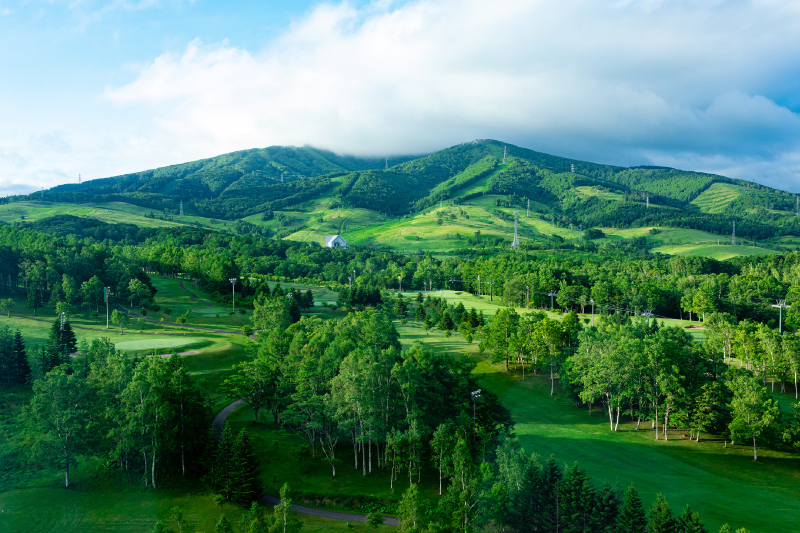 窓からの景色フォレスト側 (一例。グリーンシーズン)
