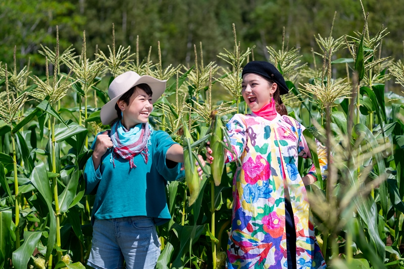 旬のとうもろこしやフルーツを畑で味わう!ルスツファームで収穫体験&ピザづくりを開始