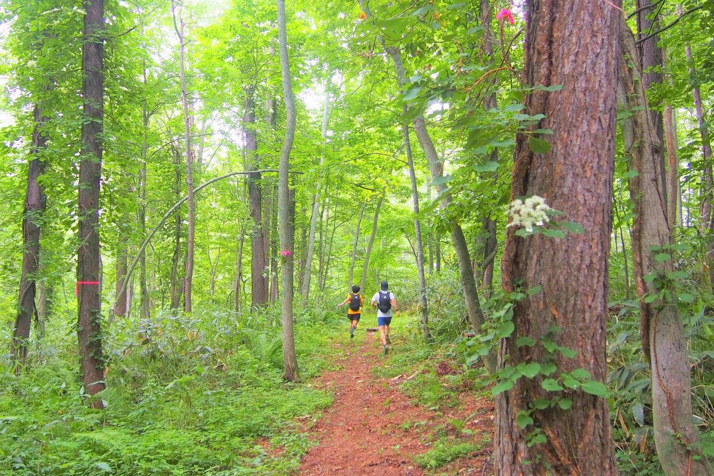 Rusutsu Trail Time Attack